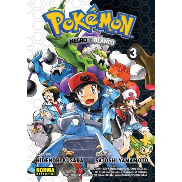 POKEMON 28. NEGRO Y BLANCO 3